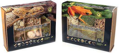 terrariums kits.jpg
