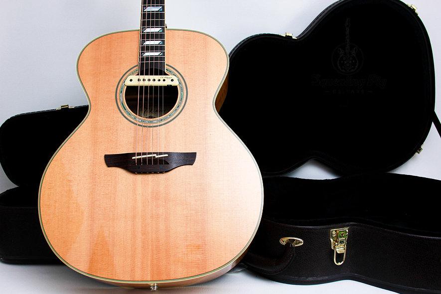 """TAKAMINE MIJ Electro Acoustic LTD F250SM """"Natural + Ebony"""" (2011)"""