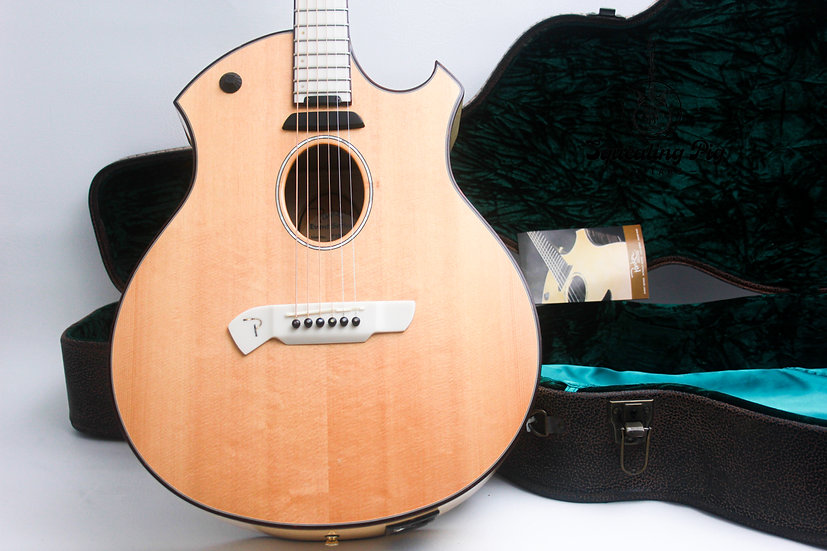 "PARKER Ken Parker USA Electro Acoustic P10EN ""Birdseye Maple + Ivoroid"" (2006)"