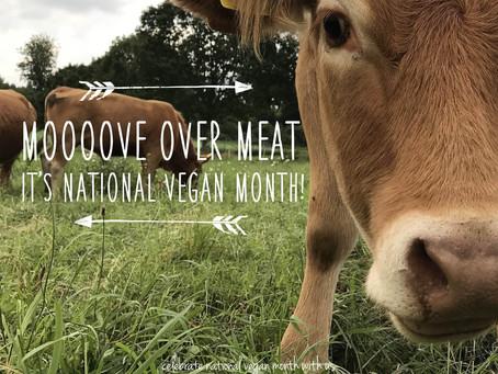 What's it like going vegan?