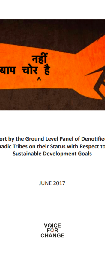 Ground Level Panel of Denotified and Nomadic Tribes (2017)