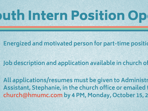 Youth Intern Wanted