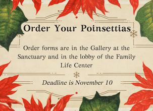 Order Your Christmas Poinsettias