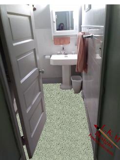 bathroom 4 carpet png.jpg