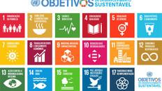 Fazendo a sustentabilidade ir além do verde