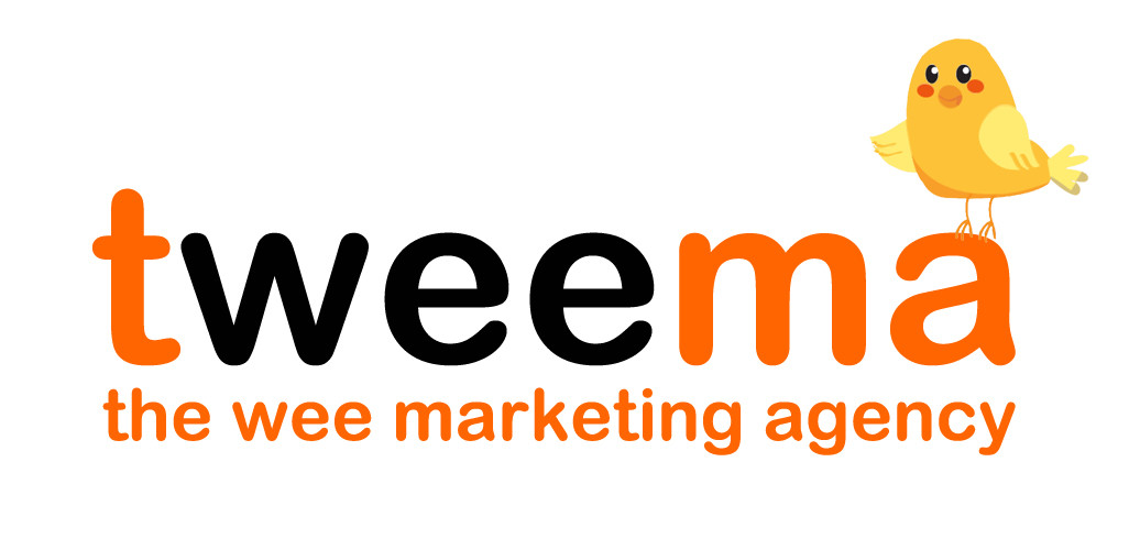 The Wee Marketing Agency | Digital Marketing Consultancy