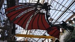 ailes-dragon-calais