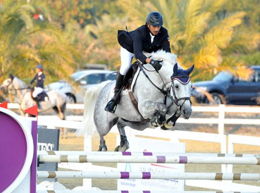 Five AWESOME Horsey Events this weekend