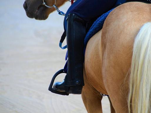New study on rider weight