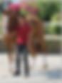 Screen Shot 2019-11-12 at 12.48.01 PM.pn