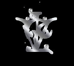 3D VL.png