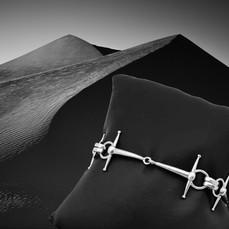 Fulmar Bit Bracelet