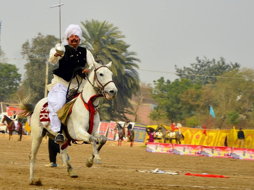 Remembering the Royal Pioneer of Tent Pegging