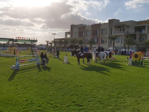 The Sustainable City Horse Show 2020 ends on a high!