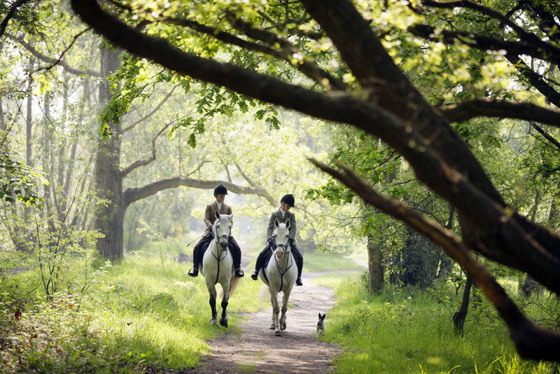 wimbledon_village_stables_7.jpg
