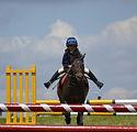 child_horse_jump_fun_riding-853758.jpg