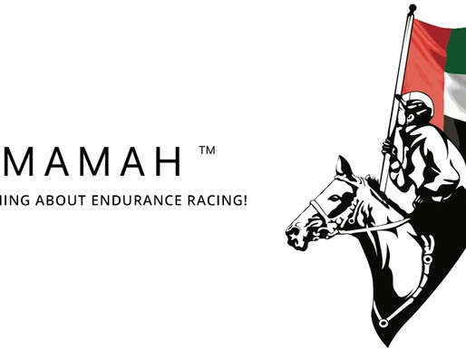 Yamamah App Launches New Market Feature