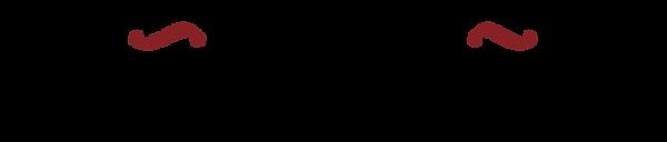 fundacionvillanueva_logo.png