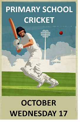 cricket poster website 2018.png