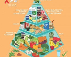 The Newest Food Pyramid Release