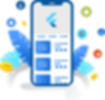 flutter-application-development-info2155