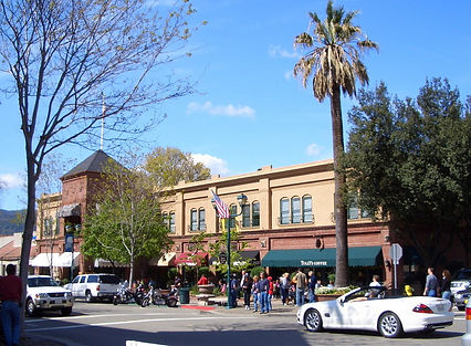 pleasanton plaza san ramon realty