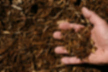 Double Shredded Natural Oak Blend Mulch