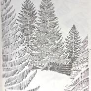 Pamdemic Drawings, Bucks County Woods