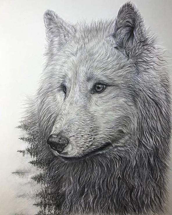 pencils on watercolour csard