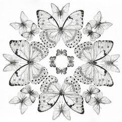 Ink Butterfly Mandala