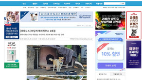 [포토뉴스] 마당개 해피하우스 1호점