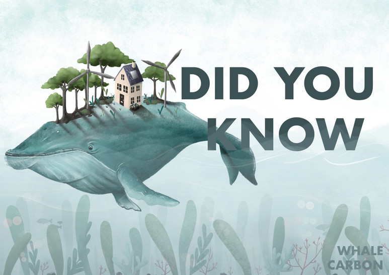 DID YOU KNOW POSTER.jpg