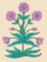 05 Indian Flower .jpg