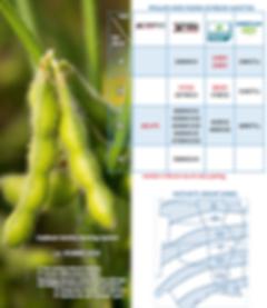 Soybean Naming & Lineup.PNG
