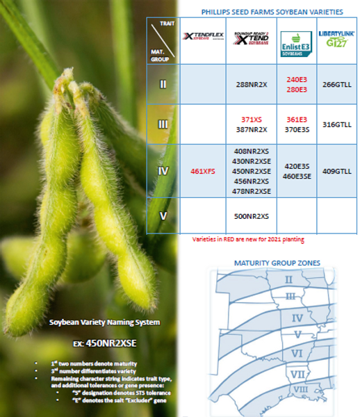 Soybean Naming & Lineup.PNG