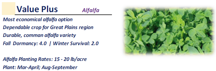 Value Plus Alfalfa.PNG