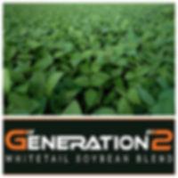 Generation 2 Whitetail Soybean Blend.jpg