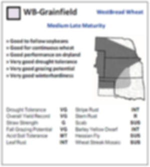 WB Grainfield.PNG