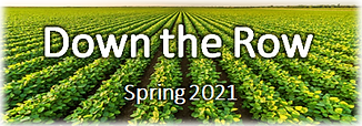 Down the Row Spring 2021.png
