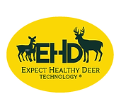 EHD_MainLogo_Outlines.png