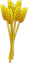 wheat-312759_640.png