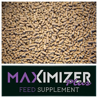 Maximizer Plus Feed Supplement.jpg