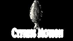 Cypress_Motion_Logo_White_v2.png