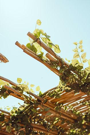 Cabane Bambou-55.jpg