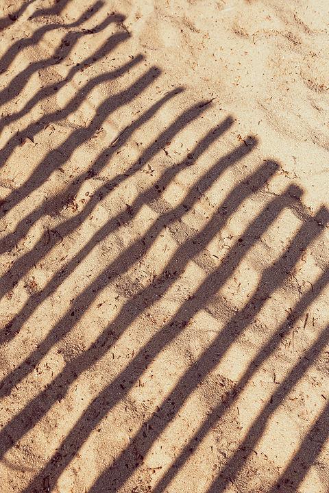 Cabane Bambou Septembre 20-118.jpg