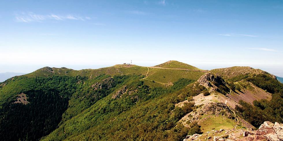San Juan en el Montseny (Turó de l'Home) ¡nos vamos de acampada!