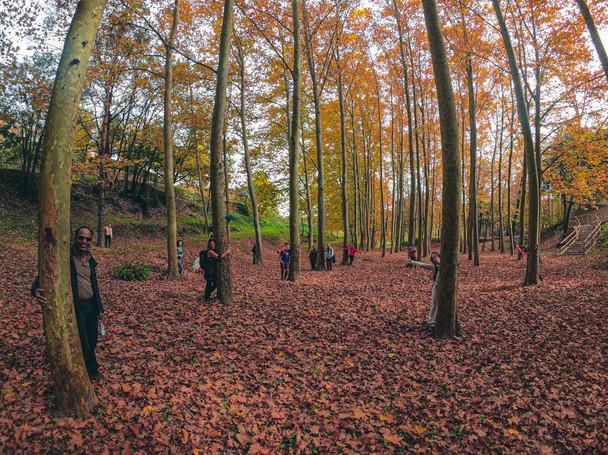 Conscious Hike in Pantà de Sau