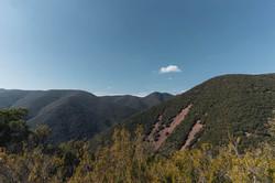 """Natural Park """"el Montseny"""""""