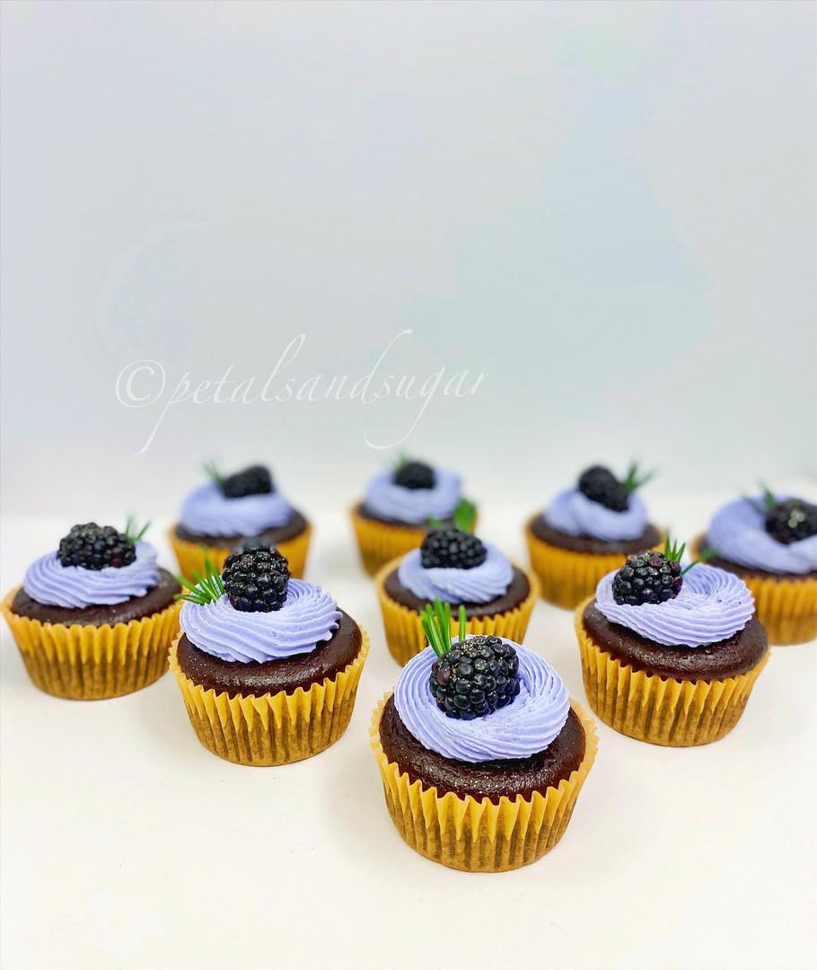 Sarasota Cupcakes Vegan Glutenfree