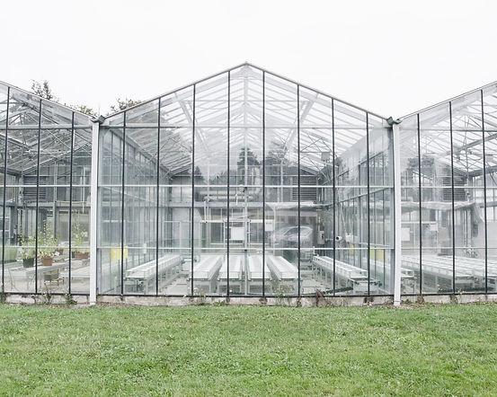 inra greenroom-17.jpg